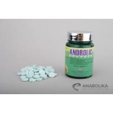 Androlic tabletten (100 tab)